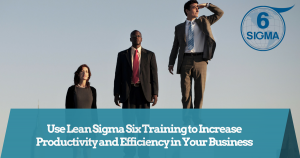 Six Sigma Training and Certification (41)