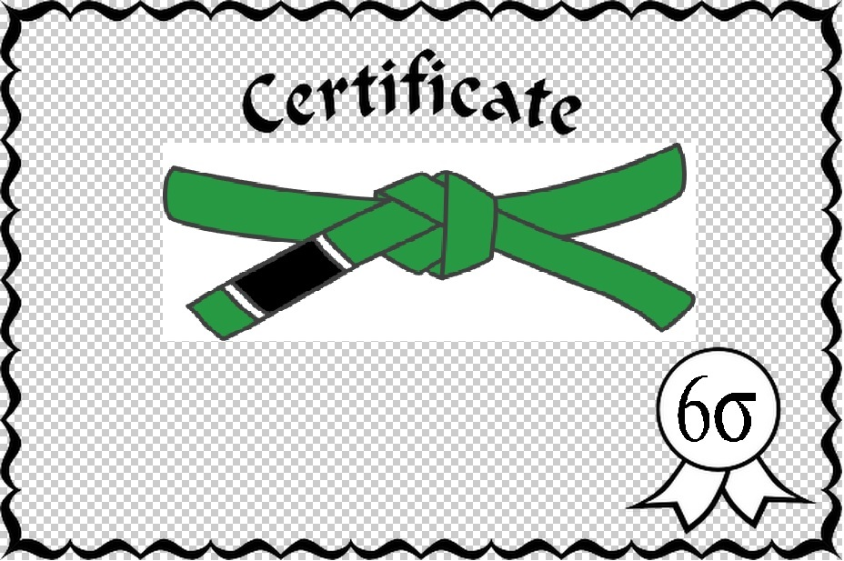 Blog What Is A Six Sigma Green Belt Lean 6 Sigma