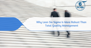 Six Sigma Training and Certification (30)