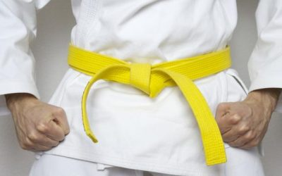 One of the early belts you will earn is Yellow Belt. Here's what you can expect from your future Yellow Belt career path.