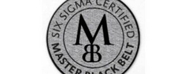 We've spoken about White, Yellow, Orange, Green and Black Belt training up to now. The final step on the ladder is Master Black Belt training!
