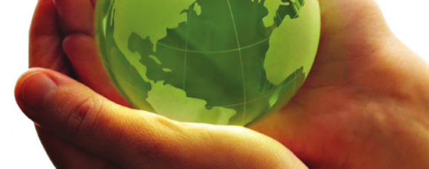 Green Six Sigma can improve your business's carbon footprint and your chances of success!