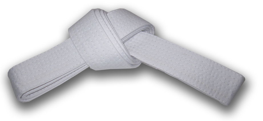 black belt analysis A six sigma black belt will have demonstrated a thorough knowledge of data  analysis but may not be very skilled in project management the same can be  said.