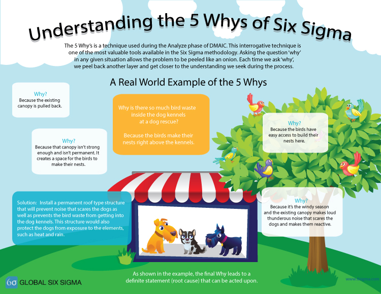 5 whys 6 sigma infographic