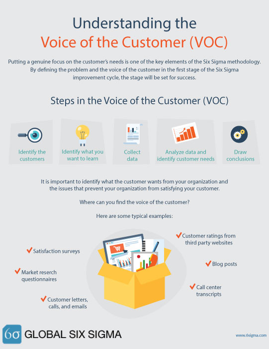 voice of the customer VOC blog
