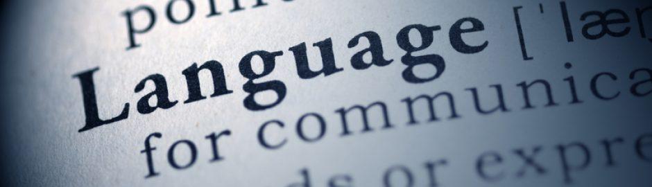 six sigma language